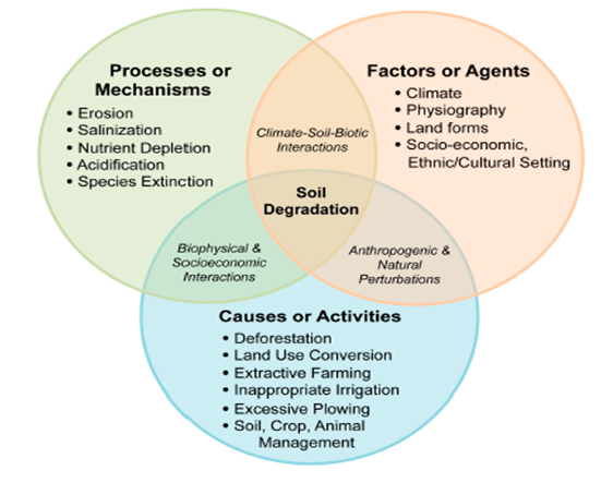 Restoration of Degraded Agricultural Land: A Review